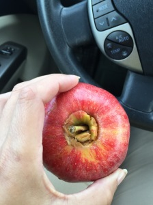 Traveling Peanut Butter Apples