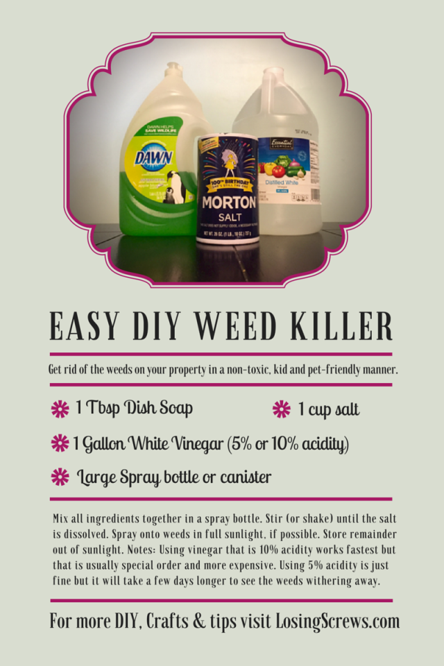 Easy DIY Weed Killer